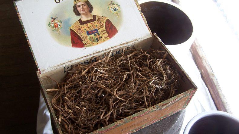 Inside the Box: Chinese Mugwort Root – Mai Wah Society